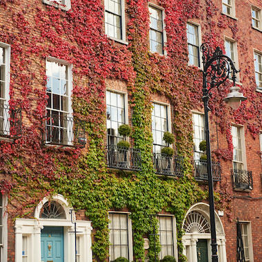 The Prettiest Spots in Dublin to Enjoy the Autumn - Banner
