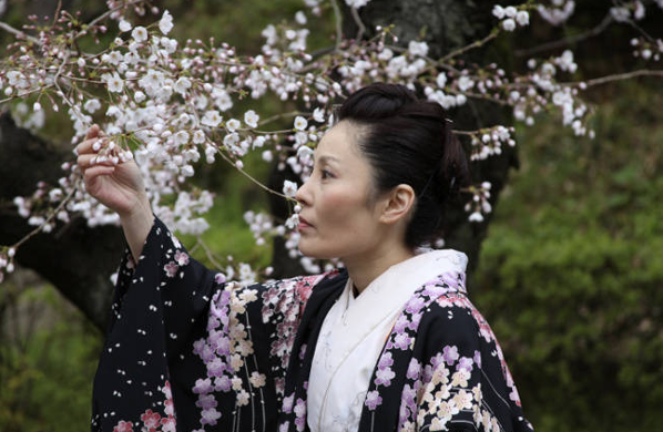 Cherry blossom dating in asia