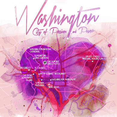 Washington - city of passion and power - banner