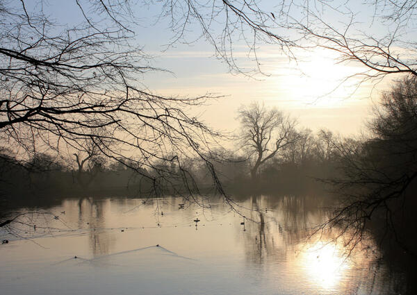 hampstead heath winter