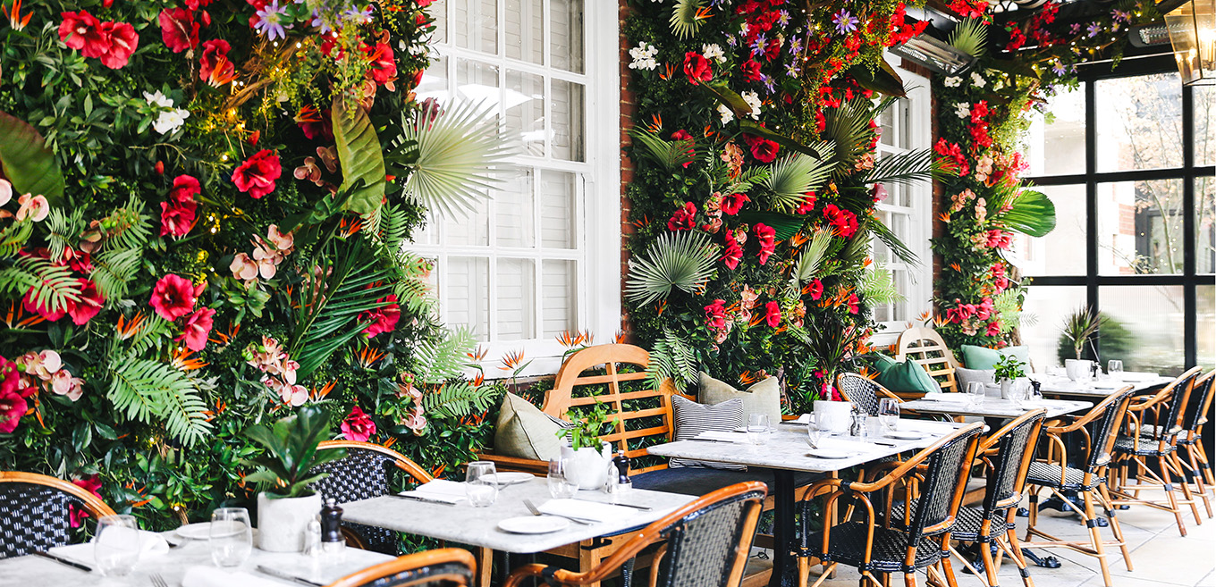 Summer Jungle at Dalloway Terrace