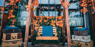 Wooden swing and autumn leaves